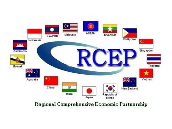 Singapore hopeful for RCEP finalisation this year hinh anh 1