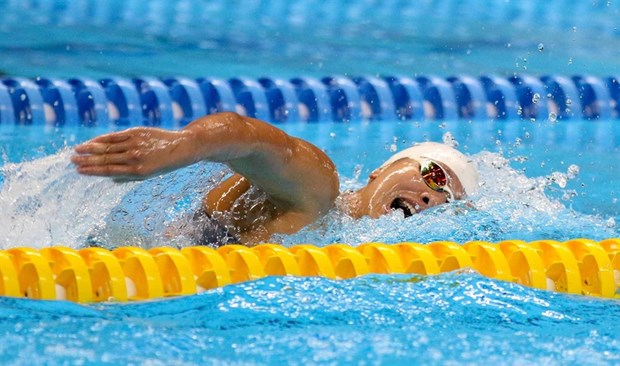 Swimmer Vien invested strongly for SEA Games 30 hinh anh 1