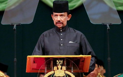 Sultan of Brunei to pay State visit to Vietnam hinh anh 1