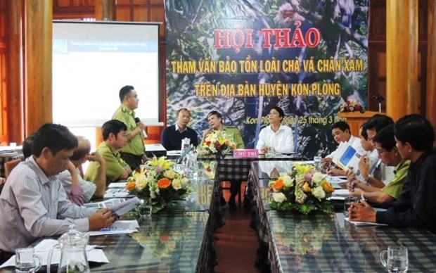 Workshop talks conservation of rare langur in Kon Tum hinh anh 1