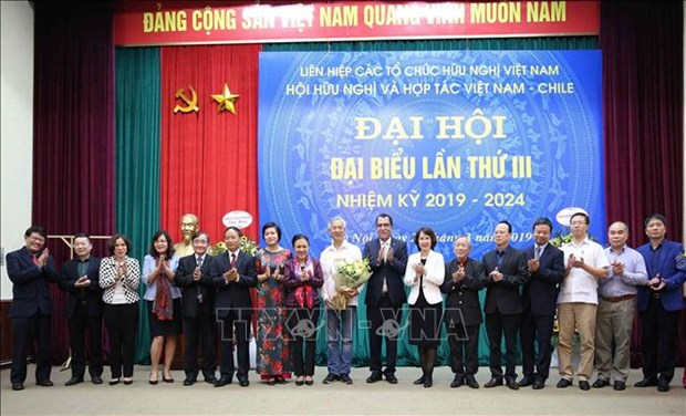 Association works to promote Vietnam-Chile friendship hinh anh 1