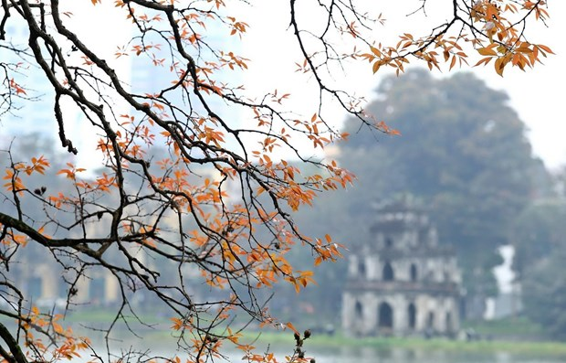 Hanoi listed in Top 25 global destinations by TripAdvisor hinh anh 1