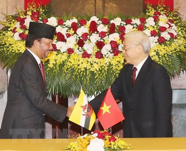 Vietnam, Brunei upgrade ties to comprehensive partnership hinh anh 1