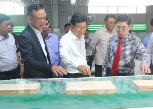Deputy PM orders tightening control of use of forest hinh anh 1