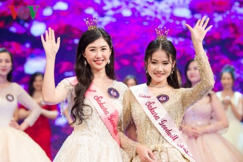 Goodwill ambassador for Japanese cheery blossom picked hinh anh 1