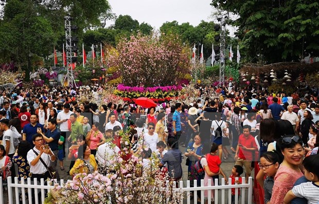 Japanese cherry blossom festival extended for one day hinh anh 1