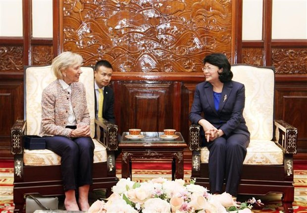 Vice President hosts Operation Smile's leader hinh anh 1