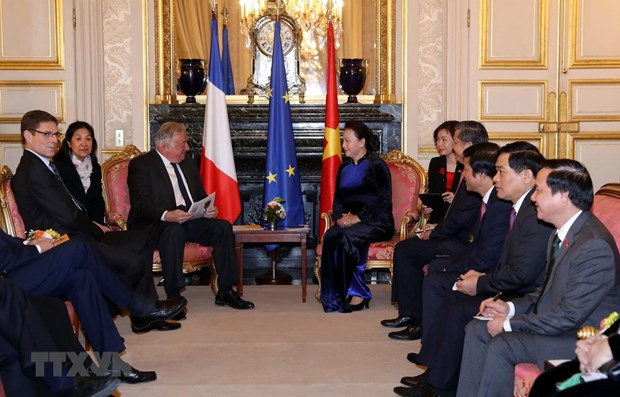 NA Chairwoman: Vietnam regards France as priority partner hinh anh 1