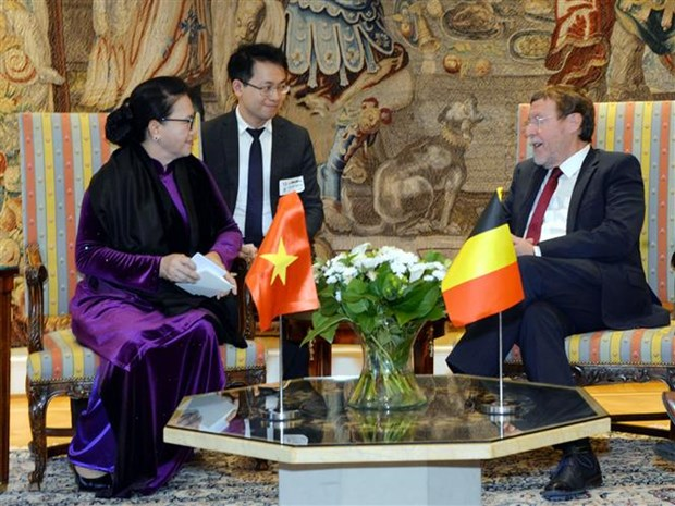 Vietnamese NA Chairwoman meets Belgian lower house leader hinh anh 1