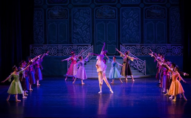 "Vietnamese, Japanese artists perform ""Cinderella"" ballet hinh anh 1"