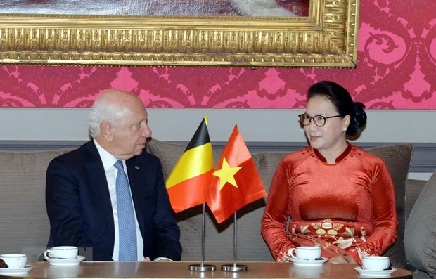 NA Chairwoman meets with Belgian Senate President hinh anh 1