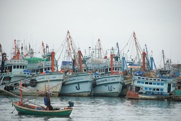 Thailand, EU hold meeting on IUU fishing hinh anh 1