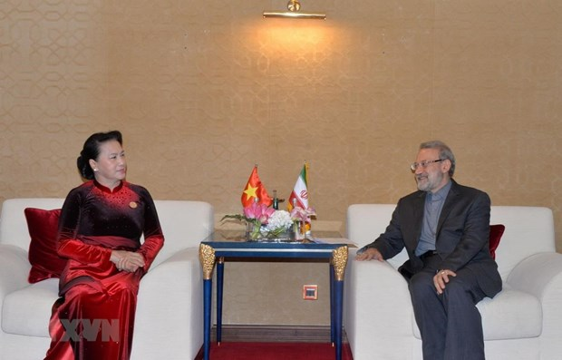 Vietnam, Iran look to foster partnership in various fields hinh anh 1