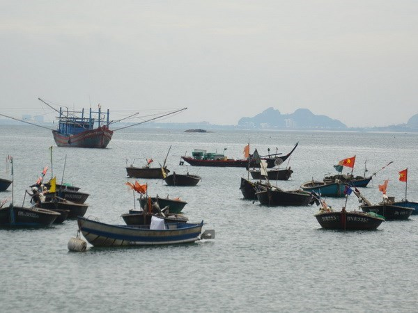 Patrols increased to minimise violation by foreign fishing ships hinh anh 1