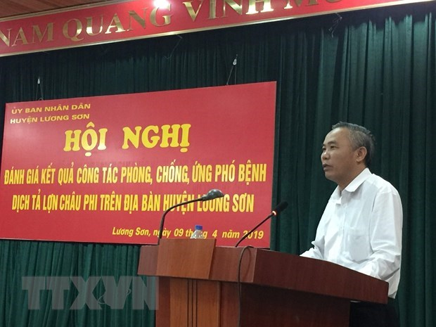 Hoa Binh province declares free from African swine fever hinh anh 1
