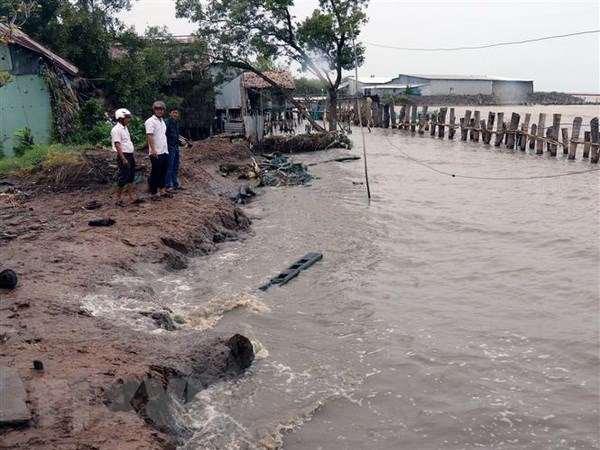 Conference looks to fight coastal erosion in Mekong Delta hinh anh 1