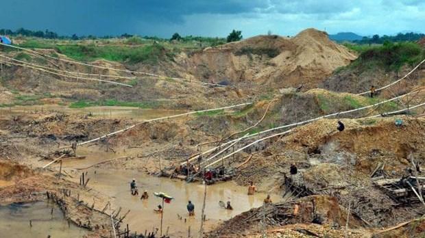 Indonesia: Landslide kills five diamond miners hinh anh 1