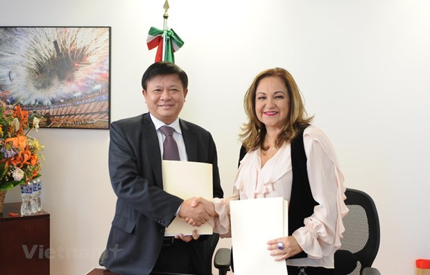 Vietnam News Agency boosts cooperation with Mexican counterpart hinh anh 1