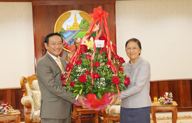 Vietnamese leaders congratulate Lao counterparts on traditional New Year hinh anh 1