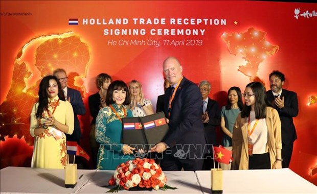 Netherlands boosts cooperation with HCM City hinh anh 1