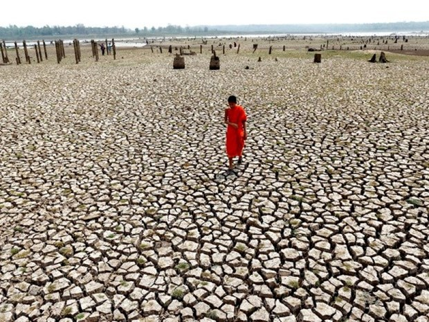 Thailand warns of serious drought hinh anh 1