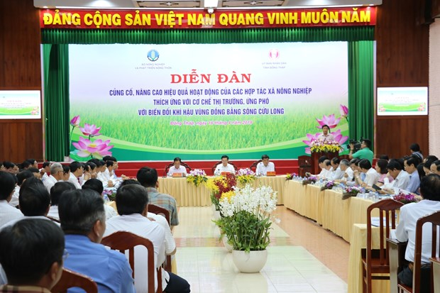 Agricultural cooperatives urged to adapt to market mechanism, climate change hinh anh 1