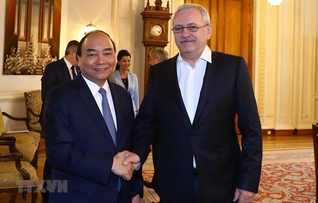 PM meets head of Romania's Chamber of Deputies hinh anh 1