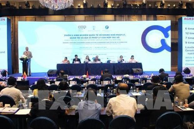 Enabling legal framework for cooperatives' development needed hinh anh 1
