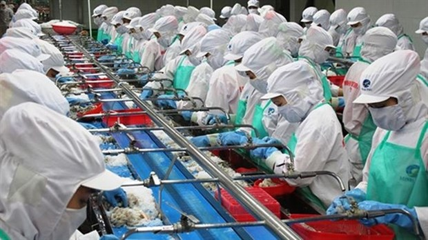 Minh Phu Seafood to sell 75.7 million shares this year hinh anh 1