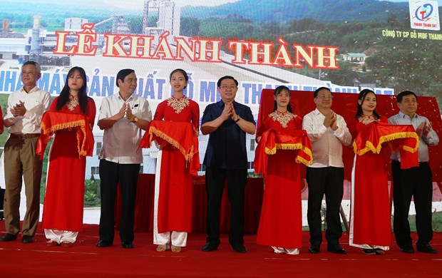 Major wood processing factory opened in Ha Tinh province hinh anh 1