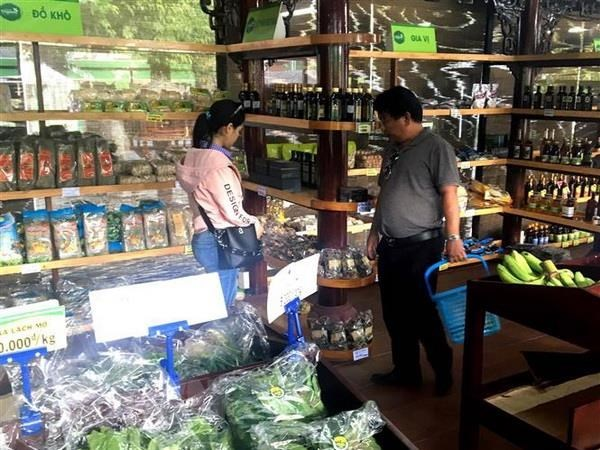 Vietnamese firms to introduce products at South African supermarkets hinh anh 1