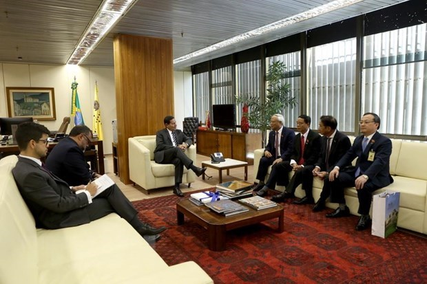 Brazil – Vietnam's important partner in Latin America: NA Vice Chairman hinh anh 1