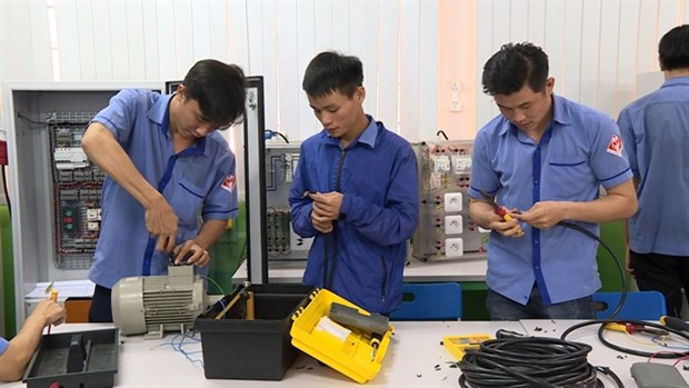 Vocational training needs to attract participation of enterprises hinh anh 1