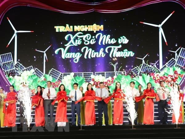 Grape and wine festival opens in Ninh Thuan province hinh anh 1