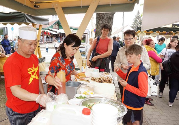 Vietnamese culture shines in Czech city hinh anh 1