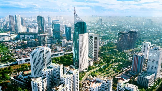 Indonesian President plans to relocate capital city hinh anh 1