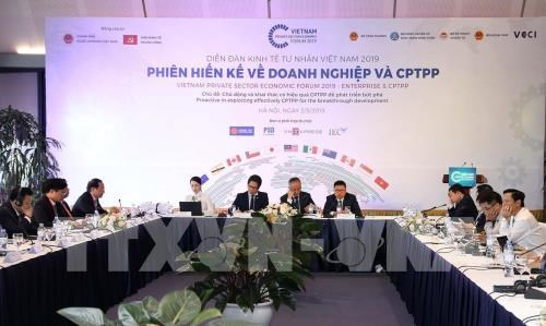 Firms need to be proactive in CPTPP: official hinh anh 1