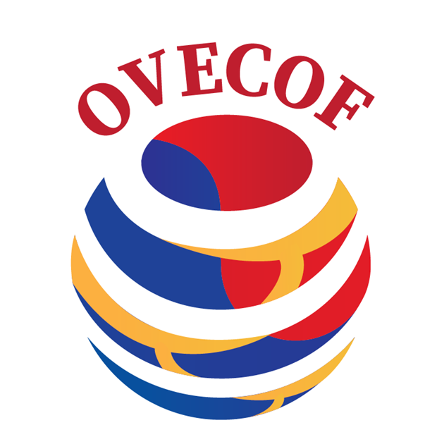 Overseas Vietnamese to convene first economic forum in RoK hinh anh 1