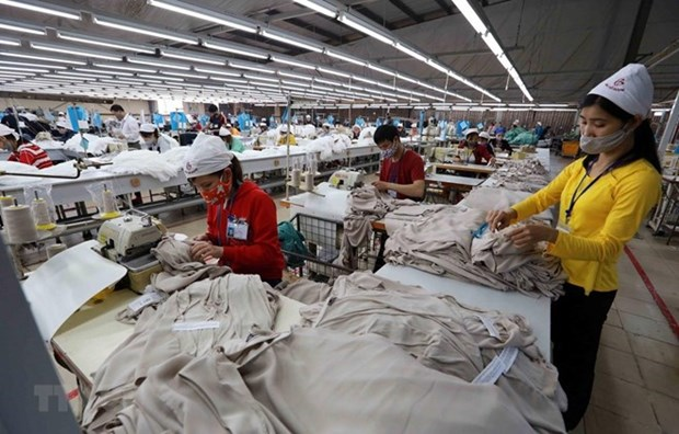 Proactive measures taken to promote export to CPTPP markets hinh anh 1