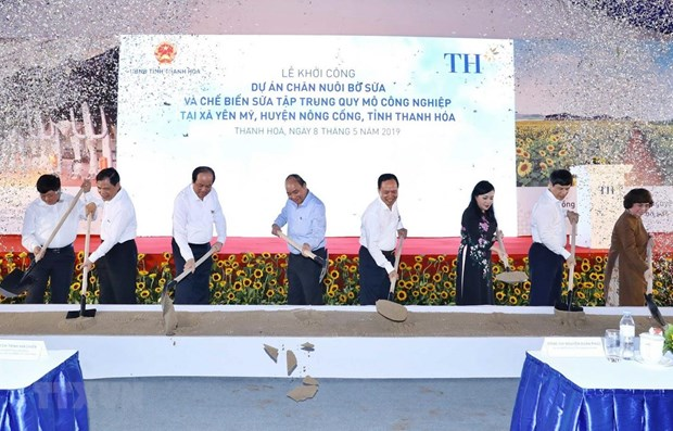 Work begins on TH dairy farm project in Thanh Hoa province hinh anh 1