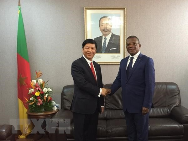 Vietnam hopes for stronger cooperation with Cameroon hinh anh 1