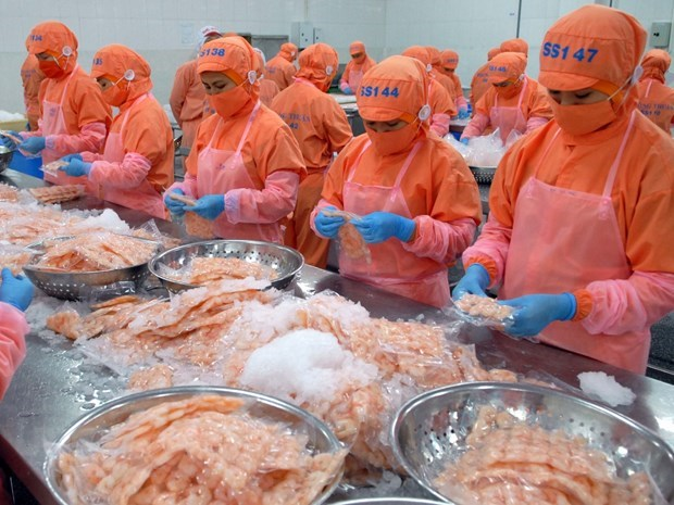 CPTPP – a driver of shrimp export to Canada hinh anh 1