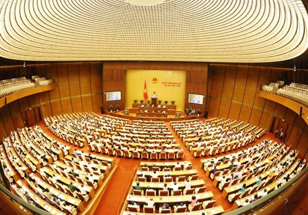 Enforcement of 2013 Constitution to be reviewed hinh anh 1