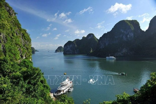 Ha Long Bay gets new helicopter tour hinh anh 1