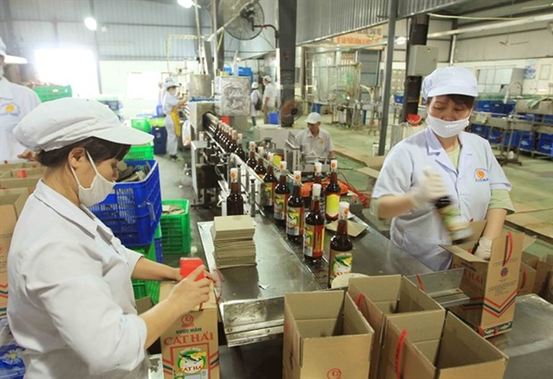 Traditional fish sauce need to be promoted: experts hinh anh 1