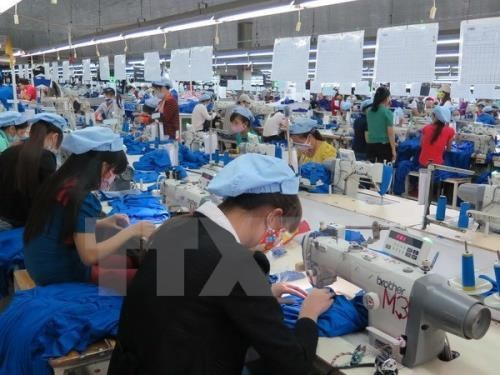 White Book on Vietnamese businesses 2019 to come late May: GSO hinh anh 1