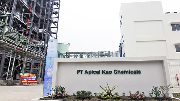 Japanese household products maker opens fatty acid plant in Indonesia hinh anh 1