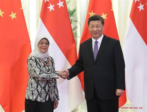 Singapore, China step up bilateral ties hinh anh 1