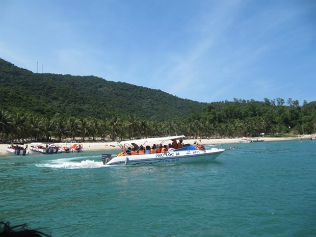 Cham Islands officials resist plan to send tourist boats from Da Nang hinh anh 1
