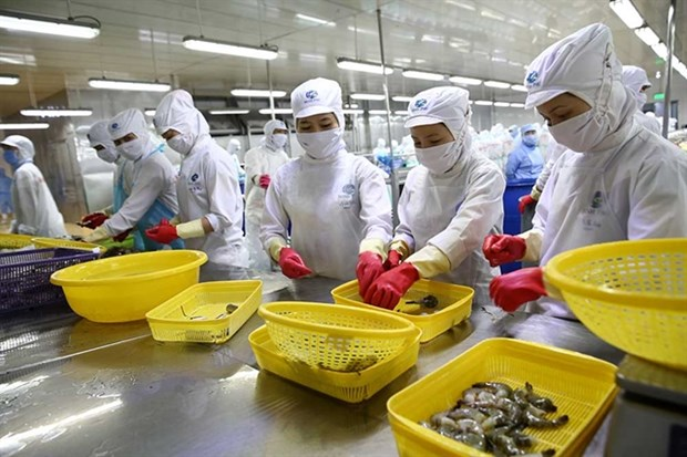 Mitsui & Co invests 155 million USD in Vietnamese seafood company hinh anh 1